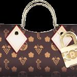 True Logo Gift Bag