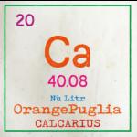 Calcarius Orange Puglia Label