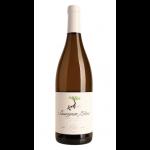 90+ Cellars Lot 151 Sauvignon Blanc,
