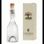 Capovilla Distillato Di Albicocche